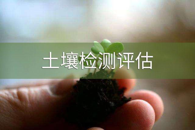 土壤环境调查与风险评估